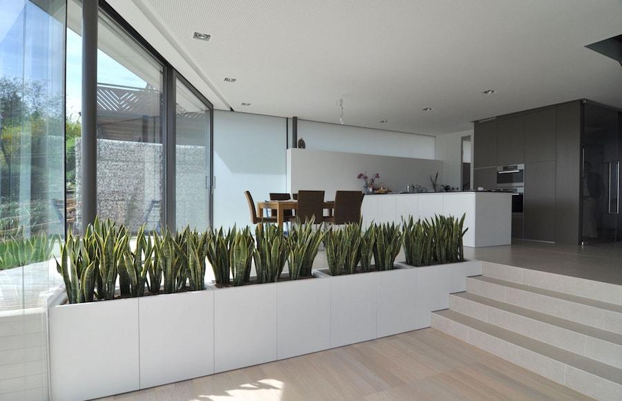 architekt linz einfamilienhaus